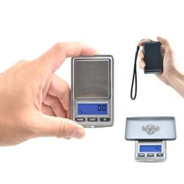 Iitust Küchenwaage, 0,1g ~ 500g Digitale Waage MINI Taschenwaage (Silber) - 1
